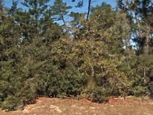 Marion County, Fl $34,000 Reduced : Ocala : Marion County : Florida