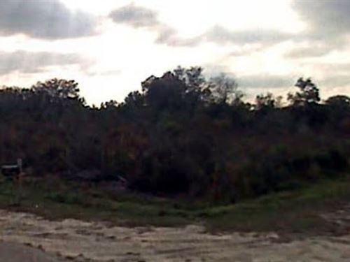 Okeechobee Co, Fl $29,900 Neg. : Okeechobee : Florida