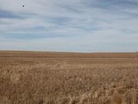 Lhj Farm Llc : Sidney : Cheyenne County : Nebraska