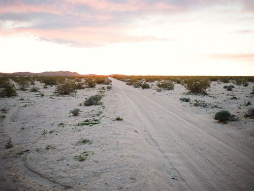 Wanna Get Away : Joshua Tree : San Bernardino County : California