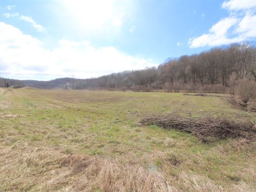 Tr 409 - 28 Acres : Warsaw : Coshocton County : Ohio