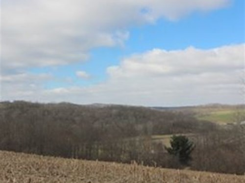 Tr 409 - 44 Acres : Warsaw : Coshocton County : Ohio