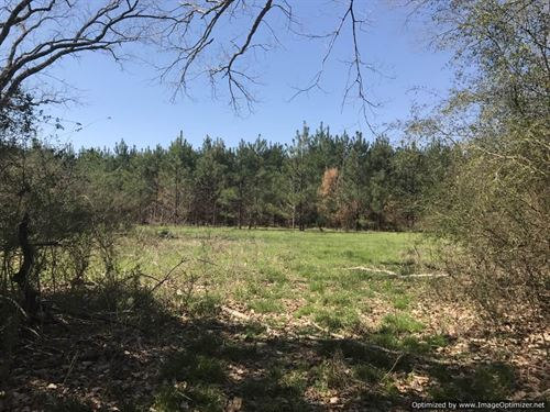 50.43+/- Acres : Quitman : Clarke County : Mississippi