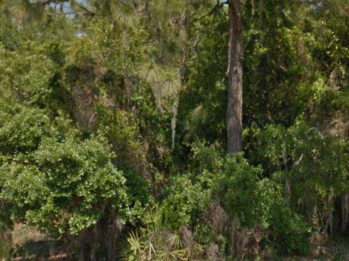 Hernando County, Fl - $46,000 Neg : Spring Hill : Hernando County : Florida