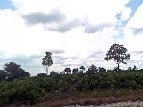 Lee County, Fl $15,000 Neg Each : Lehigh Acres : Lee County : Florida