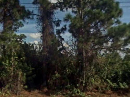 Lee County, Florida $13,500 Neg : Lehigh Acres : Lee County : Florida