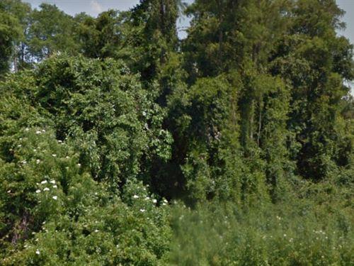 Osceola County, Florida $31,000 Neg : Saint Cloud : Osceola County : Florida