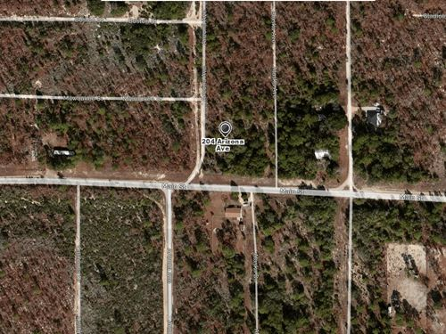 .18 Acres In Hawthorne, FL : Hawthorne : Putnam County : Florida