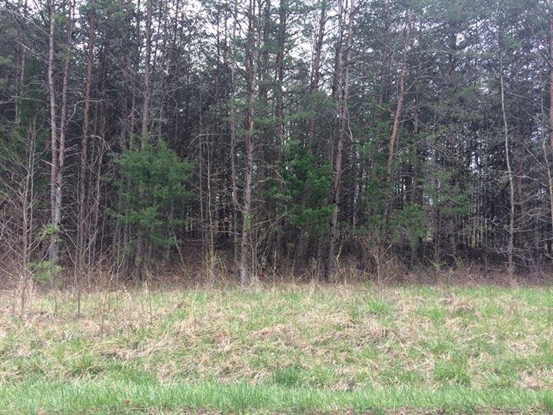 Wooded Building Lot : Meherrin : Prince Edward County : Virginia