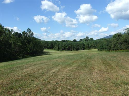 For Sale 89.844 Acre Tract : Salem : Roanoke County : Virginia