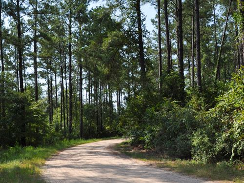 45 Ac Palmer Road : Rye : Liberty County : Texas