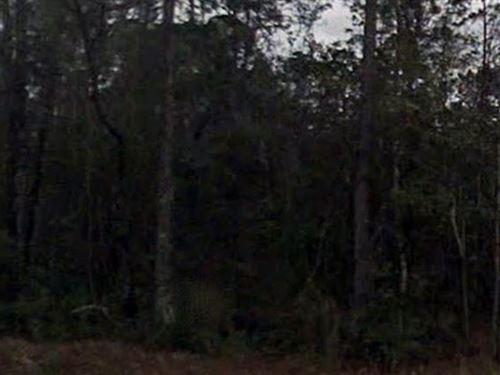 Nassau County, Florida $50,000 Neg : Callahan : Nassau County : Florida