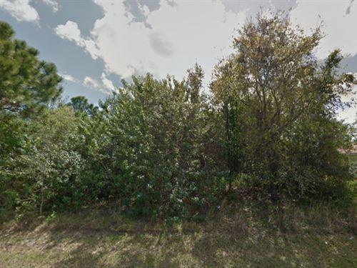 Saint Lucie County, Fl $40,000 Neg : Port St Lucie : Saint Lucie County : Florida