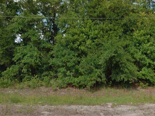 Polk County, Florida $10,000 Neg : Polk City : Polk County : Florida