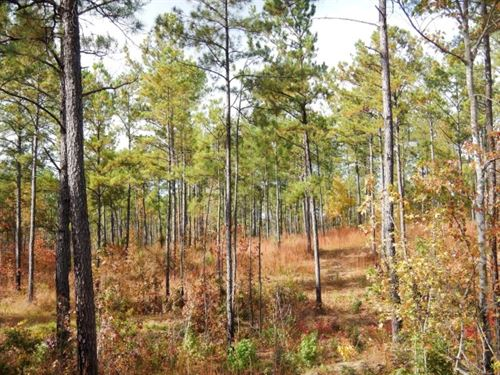 Guthrie Property : Tallasee : Tallapoosa County : Alabama
