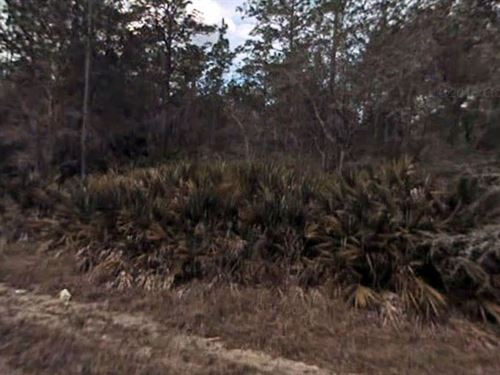 Citrus County, Fl - $55,000 Neg : Crystal River : Citrus County : Florida
