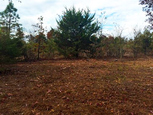 Private And Wooded 2.8 Acres : Sidney : Sharp County : Arkansas