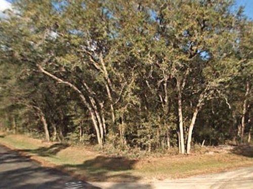 Marion County, Florida - $5,000 Neg : Ft McCoy : Marion County : Florida