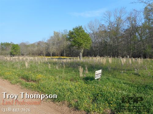 3 Waterfront Lots Near Marksville : Marksville : Avoyelles Parish : Louisiana