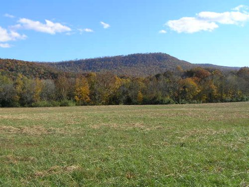 56 Acres With Panoramic Views : Pikeville : Bledsoe County : Tennessee