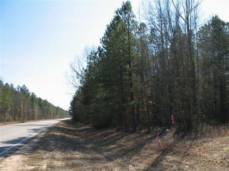 51.8 Acre Old 85 Road Tract : Sandersville : Washington County : Georgia