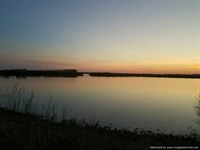 Ag Land, Ducks & Deer : Lake Providence : La Salle Parish : Louisiana