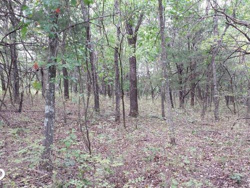 Mapleton Hunting 160 : Mapleton : Bourbon County : Kansas