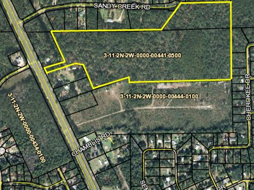 37.89 Acres In Gadsden County : Hava : Gadsden County : Florida