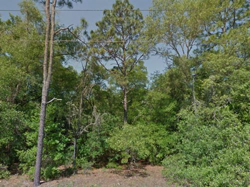 Citrus County, Florida $16,000 Neg. : Dunellon : Citrus County : Florida