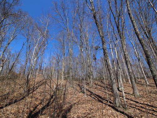 Bunker Hill Rd - 18 Acres : Mc Arthur : Vinton County : Ohio