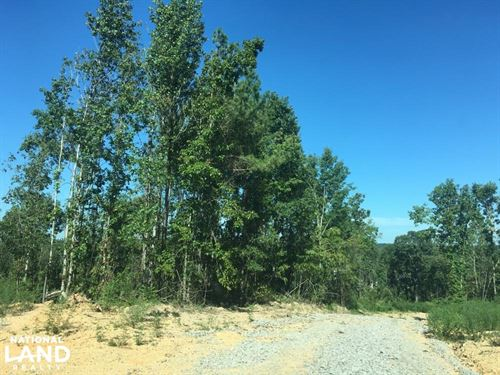 Hwy 79 Commercial Development Tract : Birmingham : Jefferson County : Alabama