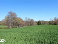 Bell Farm Road : Statesville : Iredell County : North Carolina