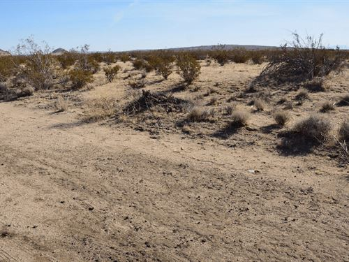 Residential Land With Road Access : California City : Kern County : California