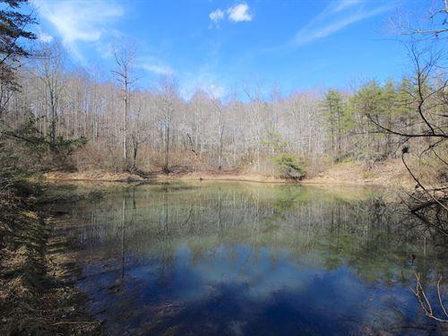 Murphy Remy Rd - 19 Acres : Mc Arthur : Vinton County : Ohio