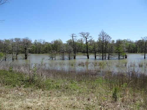 Waterfront Spring Lake Lot : Des Arc : Prairie County : Arkansas