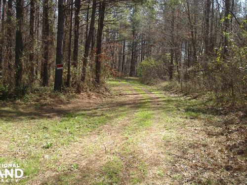 Big Brush Creek Hunting Retreat : Sawyerville : Hale County : Alabama
