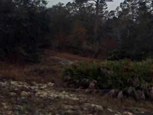 Gilchrist County, Florida - $75,000 : Fanning Springs : Gilchrist County : Florida