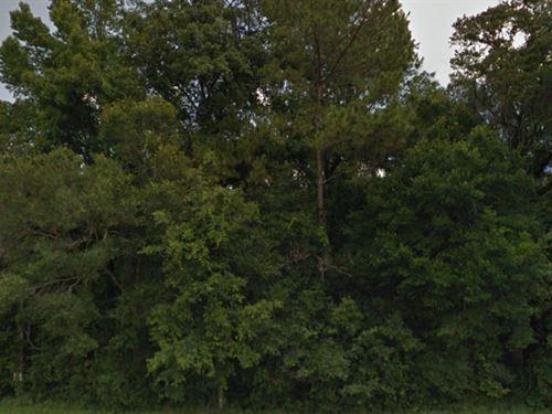 Hernando, Florida $14,000 Both : Brooksville : Hernando County : Florida