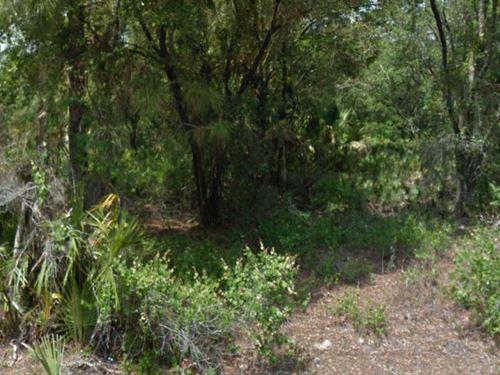 Sarasota, Florida $25,200 Neg : North Port : Sarasota County : Florida