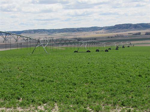 Sw Gering, Ne. Pivot 1/4 : Gering : Scotts Bluff County : Nebraska