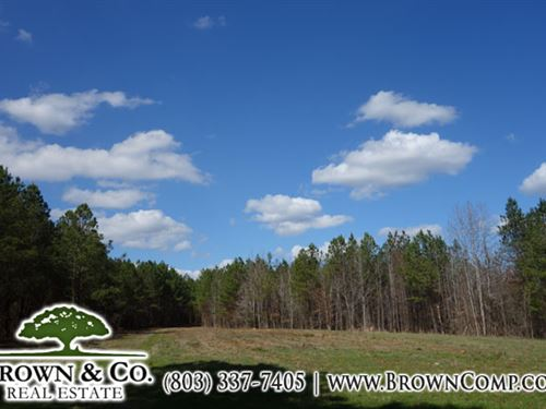 Turn-Key Sportsmans Tract : Ridgeway : Fairfield County : South Carolina