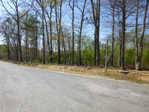 Wooded Lot On Levi : Green Bay : Prince Edward County : Virginia