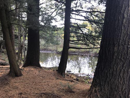 Trout Fisherman's Camp Site : Williamstown : Oswego County : New York