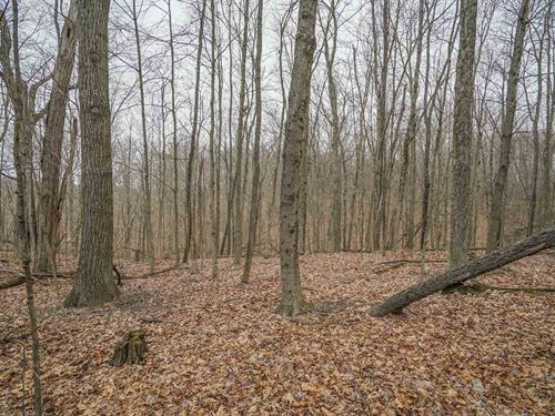 Bell Rd - 10 Acres : Malta : Morgan County : Ohio