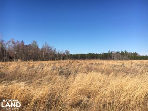 Duford Secluded Home Site Lot : Nichols : Horry County : South Carolina