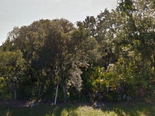 Polk, Florida $19,900 Neg : Frostproof : Polk County : Florida