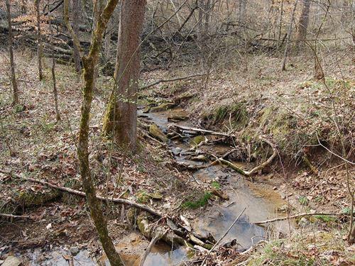 Kemper Hollow - 76 Acres : Gallipolis : Gallia County : Ohio