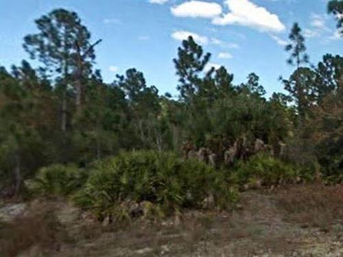 Lee County, Florida $28,000 Neg : Lehigh Acres : Lee County : Florida