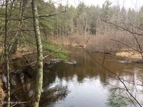 Pere Marquette River Splendor : Baldwin : Lake County : Michigan
