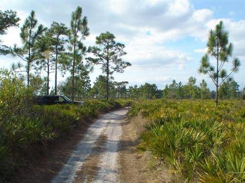 Polk County, Florida $4,000 : Frostproof : Polk County : Florida
